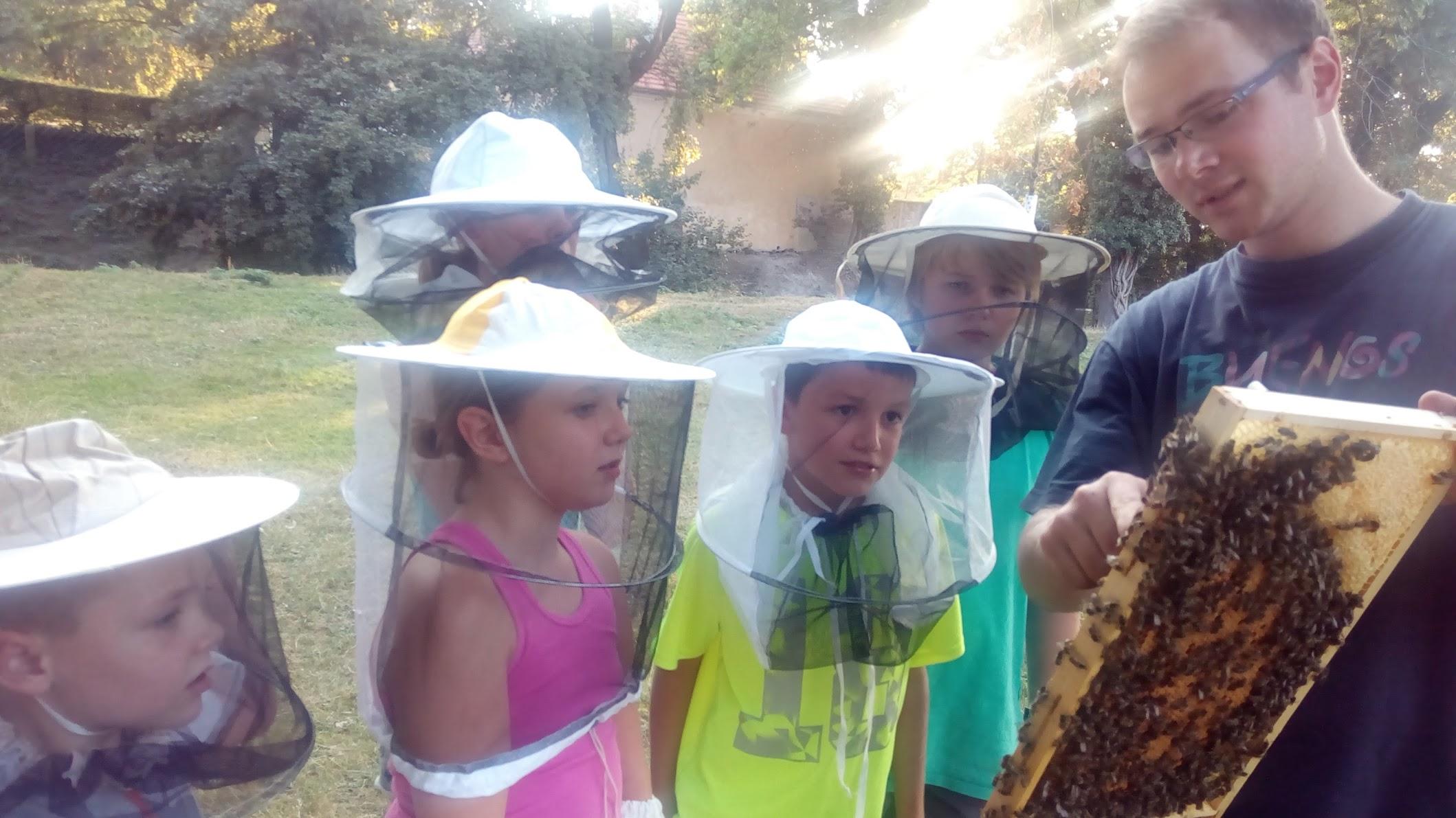 Tady tohle je včela!