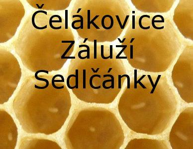 Jiří MRŇAVÝ